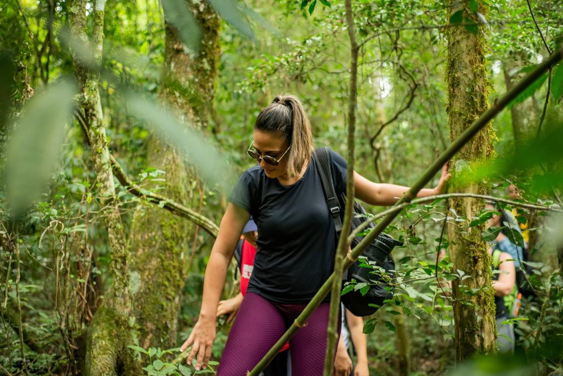 Caminhando-na-floresta-Medium